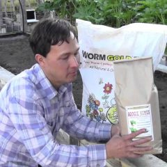[Fertilizer] DIY Homemade Organic Fertilizer Recipes – Make It Free