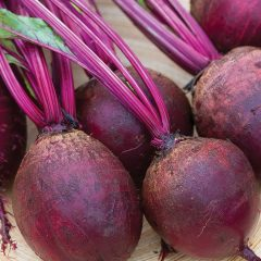 [Gardening] How To Grow Red Beets In A Container Garden