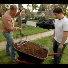 [Landscaping] Learn To Correctly Mulch A Garden Bed